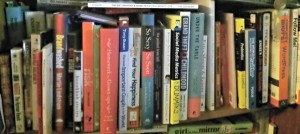 One of my Nonfiction Book Shelves