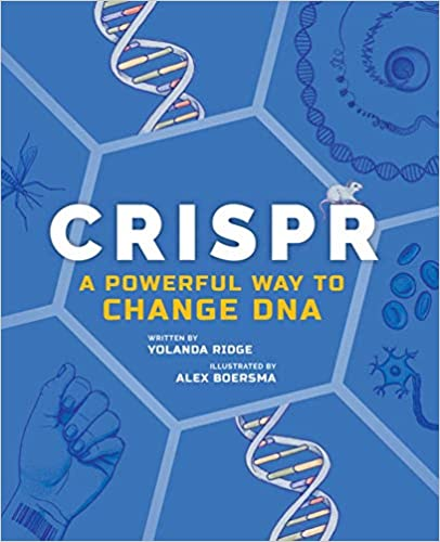 A book review of CRISPR: A Powerful Way to Change DNA by Yolanda Ridge