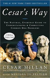 A book review of Cesar's Way: The Natural, Everyday Guide to Understanding & Correcting Common Dog Problems by Cesar Millan with Melissa Jo Peltier